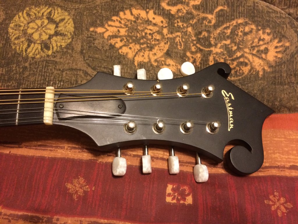 My Eastman MD315 Mandolin is For Sale, Labor Day 2017