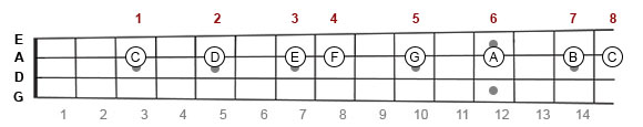 C Major scale on mandolin fretboard