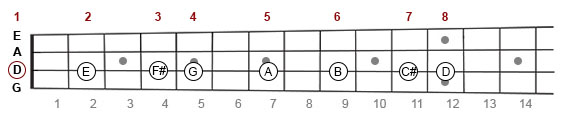 D Major scale on mandolin fretboard